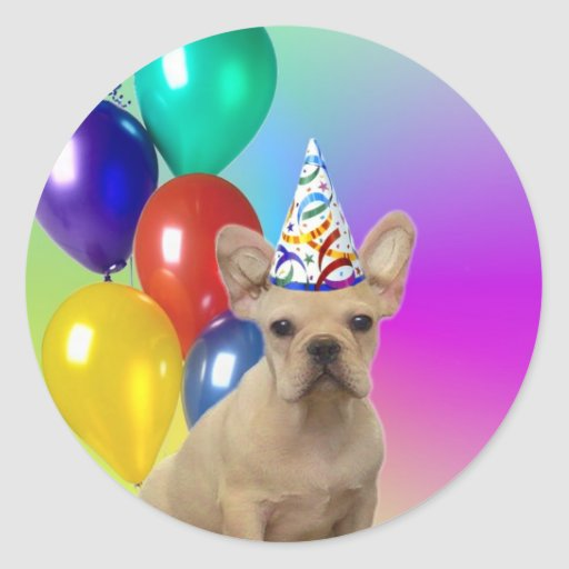 Pegatinas del dogo francés del feliz cumpleaños pegatina redonda