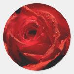 Pegatinas del el día de San Valentín Pegatina Redonda
