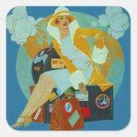 Pegatinas del equipaje del viaje del Jet-Organismo Pegatina Cuadrada