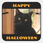 Pegatinas del feliz Halloween del gato negro Calcomanías Cuadradass Personalizadas