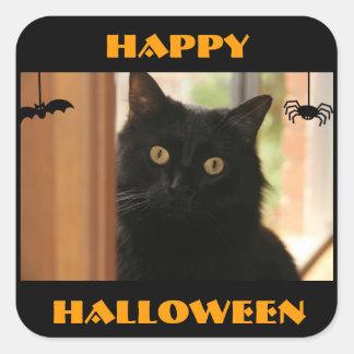 Pegatinas del feliz Halloween del gato negro Pegatina Cuadrada