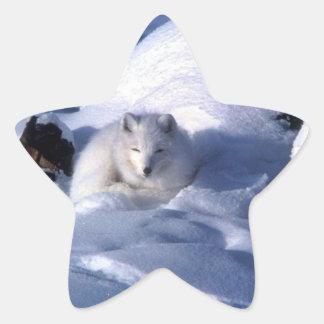 Pegatinas del Fox ártico
