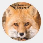 Pegatinas del Fox rojo