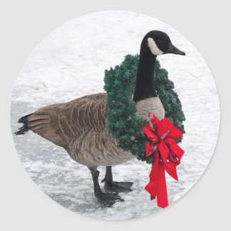 Pegatinas del ganso del navidad pegatina redonda