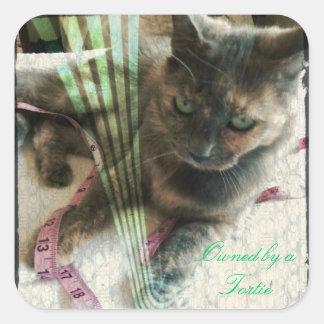 Pegatinas del gato pegatina cuadrada