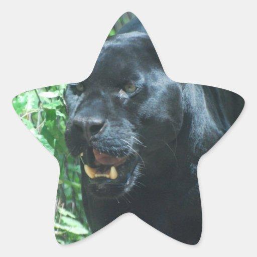 Pegatinas del gato de pantera negra pegatina en forma de estrella