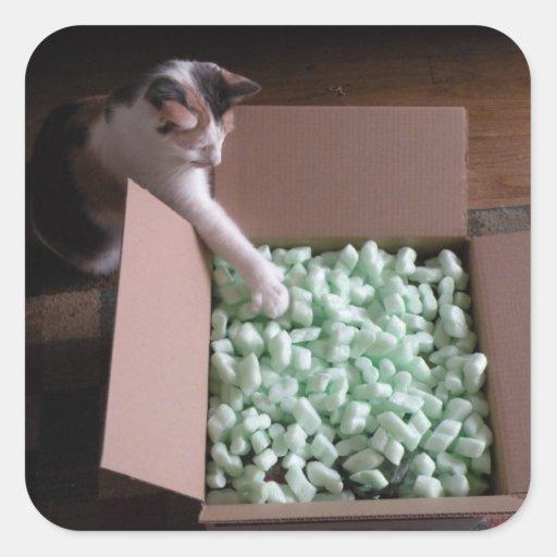Pegatinas del gato del embalaje colcomanias cuadradas personalizadas