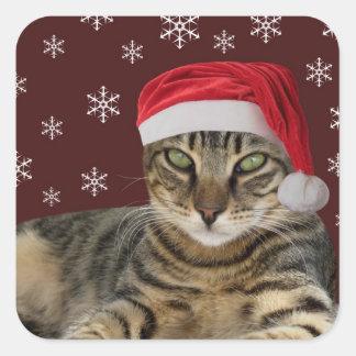 Pegatinas del gato del navidad colcomanias cuadradas