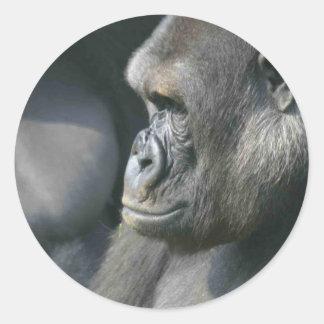 Pegatinas del gorila de montaña pegatina redonda