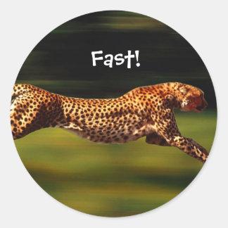 Pegatinas del guepardo pegatina redonda