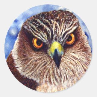 Pegatinas del halcón pegatina redonda