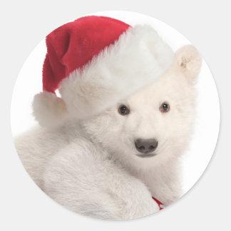 Pegatinas del navidad de Cub del oso polar Pegatina Redonda