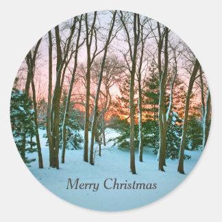 Pegatinas del navidad de un sobre de la salida del pegatina redonda