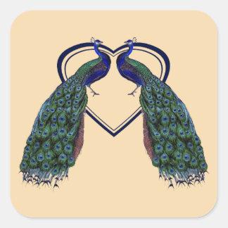 Pegatinas del pavo real del vintage o sellos del calcomania cuadradas