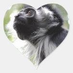 Pegatinas del perfil del mono de Colobus Pegatina Corazón Personalizadas