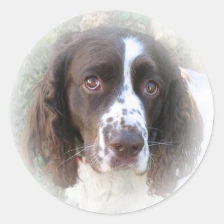 Pegatinas del perro de aguas de saltador inglés