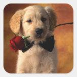Pegatinas del perro de perrito del golden calcomanías cuadradas personalizadas