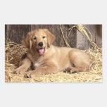 Pegatinas del perro de perrito del golden rectangular altavoces