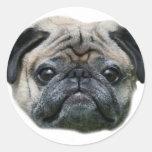 Pegatinas del perro del barro amasado pegatina redonda