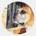 Pegatinas del perro del boxeador del cervatillo pegatina redonda