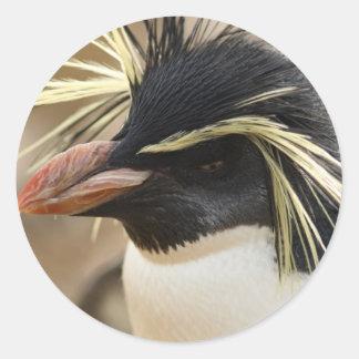 Pegatinas del pingüino de Rockhopper Pegatina Redonda