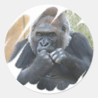 Pegatinas del primate del gorila etiquetas redondas