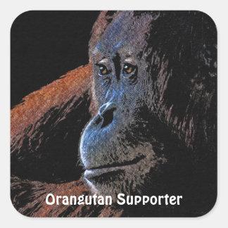 Pegatinas del primate del gran mono del orangután pegatina cuadrada