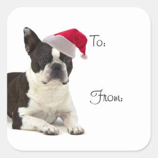Pegatinas del regalo de Santa Boston Terrier Pegatina Cuadrada
