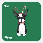 Pegatinas del regalo del navidad de Boston Terrier Pegatina Cuadradas