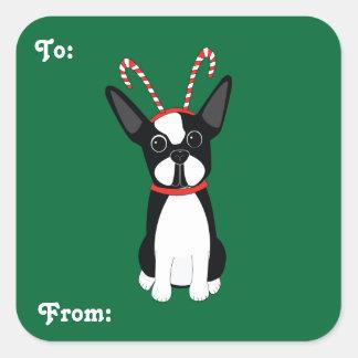 Pegatinas del regalo del navidad de Boston Terrier Pegatina Cuadrada