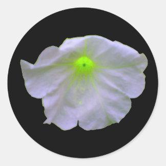 Pegatinas del resplandor del verde de la petunia pegatina redonda