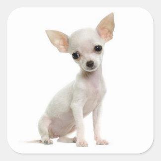 Pegatinas del saludo del perro de perrito de la pegatinas cuadradas