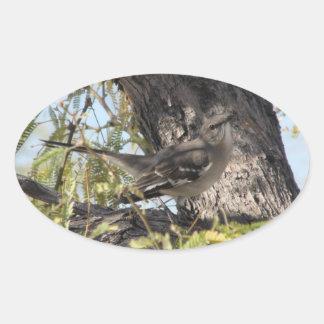 Pegatinas del solitario de Townsend Pegatina Ovalada