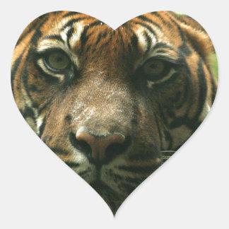 Pegatinas del tigre pegatina en forma de corazón