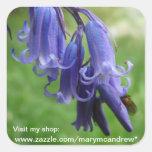 Pegatinas del WIldflower de los Bluebells