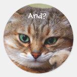 Pegatinas divertidos del gatito pegatinas redondas