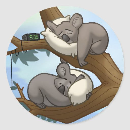 Pegatinas durmientes de la koala etiqueta redonda