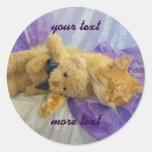 Pegatinas durmientes del gatito