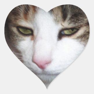 Pegatinas en forma de corazón divertidos de la pegatina en forma de corazón
