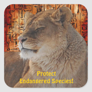 Pegatinas en peligro león africano de la fauna de calcomanía cuadradase