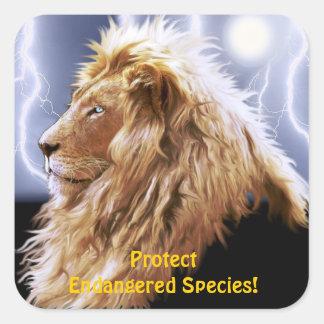 Pegatinas en peligro león africano de la fauna de calcomanías cuadradas personalizadas