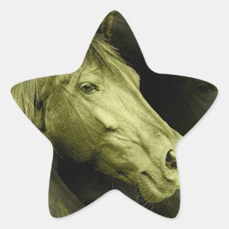 Pegatinas equinos del arte calcomania forma de estrella