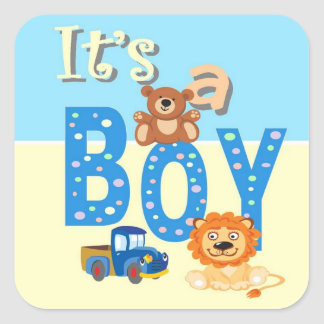 Pegatinas - es juguetes de un muchacho calcomanías cuadradas