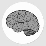 Pegatinas estilizados del cerebro