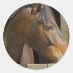 Pegatinas excelentes de los caballos pegatina redonda