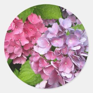 Pegatinas florales del Hydrangea Etiquetas Redondas