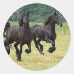 Pegatinas frisios galopantes de los caballos pegatina redonda