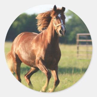 Pegatinas galopantes del caballo de la castaña pegatina redonda