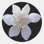 Pegatinas - Gardenia en negro Pegatina Redonda