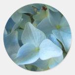 Pegatinas grandes de la flor II azul del Hydrangea Etiquetas Redondas